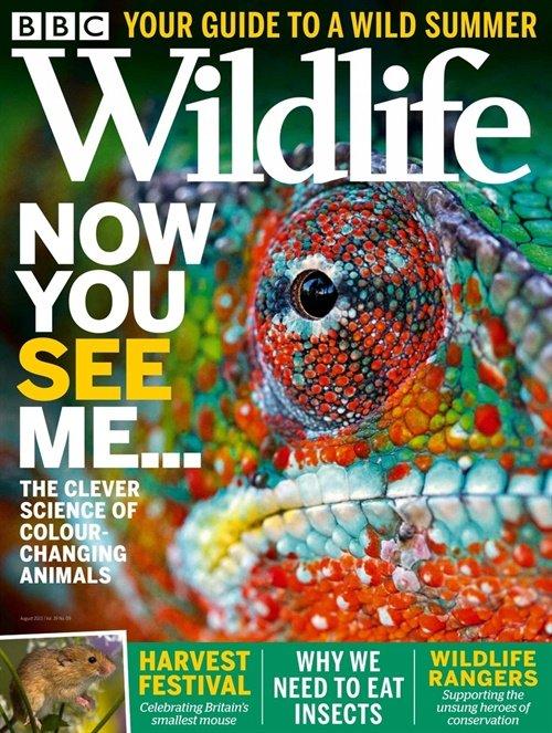 BBC Wildlife tarjous