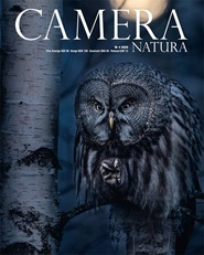 Camera Natura 4 nro tarjous